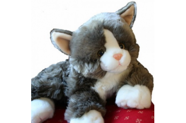 billy-the-cat-VaXdXYVs-500x500-416f4d0977ebabfd28a4b835127bd06e.jpg
