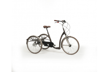 tricycle-adult-2219-retro-vintage-brown_1587455680-6f61fdcf3fd5188426639348a38be26c.jpg